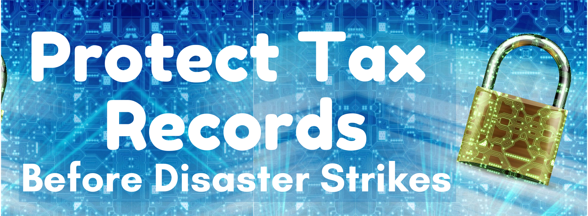 Protect Tax Records