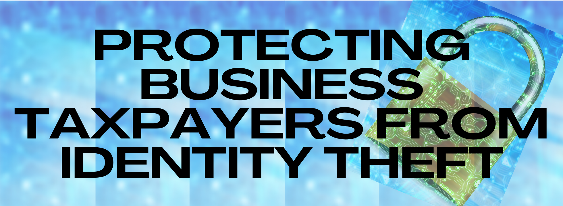 Protecting Business Taxpayers from Identity Theft